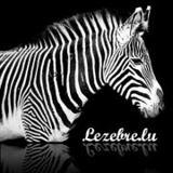 Logos de sponsors recus, merci Lezebre ! 30262_102855129759779_2853807_a
